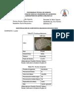 Informe N°1-Identificacion de compuestos desconocidos