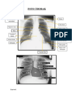 the Odyssey Radiology Guide Line