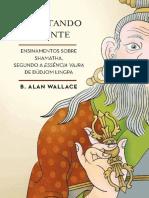 Aquietando a Mente - B. Alan Wallace
