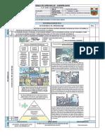 Módulo de Agropecuaria (5)
