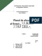 Planul de Afaceri Al Firmei VAMAG-SCULP