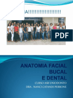 Anatomia Bucal e Dental