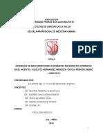 Trabajo de Fisiologia Final (2) (1)