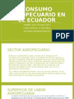 Consumo Agropecuario Interno en El Ecuador
