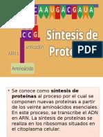 Diapositivas Biologia i
