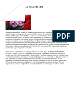 Article   Floristería La Rosaleda (47)
