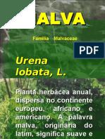 Fibra Malva Slides