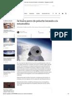 Se Busca Perro de Peluche Lanzado a La Estratosfera - Engadget en Español