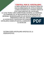 Hipofisis y Su Control Por El Hipotalamo
