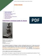 African History – Histoire Africaine [Defi] Batir La Medecine Kamite de Demain