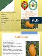 Trabajop de Introduccion de La Agroindustrias