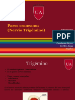 Trigemino (2).pptx