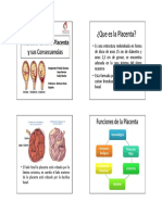 Microsoft PowerPoint Placental 1 (1) (1)
