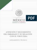 Atención y Seguimiento Del Embarazo y Su Relación Con El Virus ZIKA.