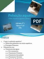 Poluiçao aquática