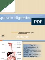 Pt_Aparato_digestivo.ppsx
