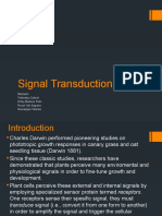 Kelompok 7 Signal-Transduction