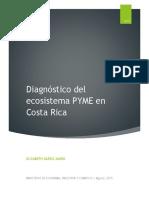 diagnostico PYMES
