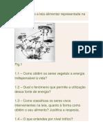 Teste CN Teias alimentares 8º.docx