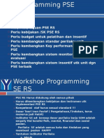 Programming SE RS