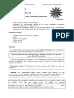 TRABAJO PRACTICO - Echinodermata