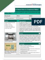 MeasurIT Flexim Application Natural Gas 0809