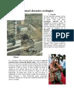 Cele mai mari dezastre ecologice.doc