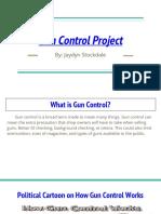 gun control project  2