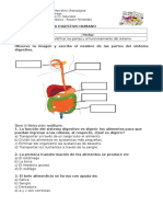GUÍA - Sistema Digestivo