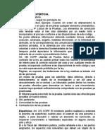 experticia 2