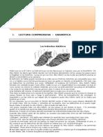 Prueba de Lenguaje y Comunicación 5to Basico