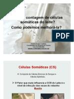 11_O_que_e_CCS.pdf