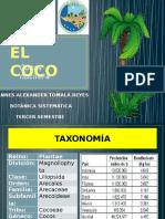 Cocos Nucifera Act