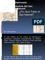 Diplomadotratamiento Del Gas Natural