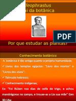 Introduc3a7c3a3o e Classificac3a7c3a3o 28-01-2013