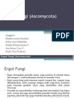 Ergot Fungi (Ascomycota) Kelompok 2