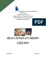 Informe Reacciones en Medio Liquido