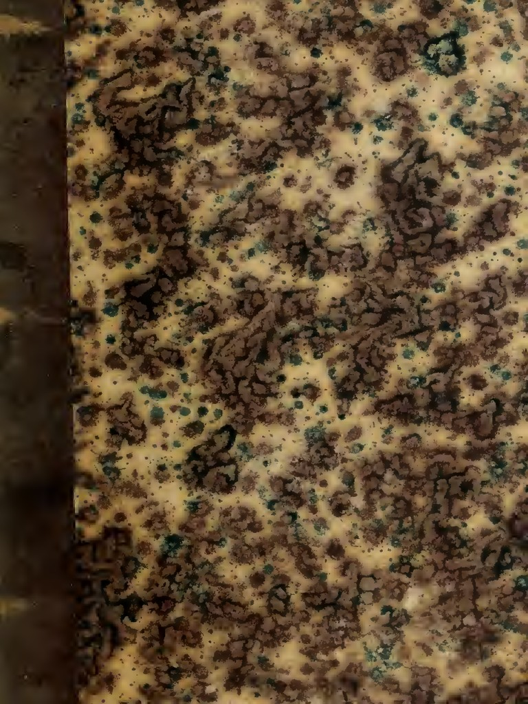 alquiler de pisos en caldas de reis tepic