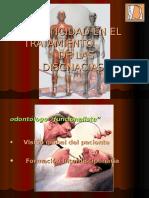 Plasticidad en El Tratamiento de Las Disgnacias