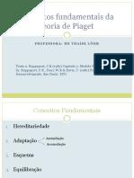 Conceitos Fundamentais Da Teoria de Piaget