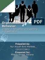 Organizationalbehavior 130402082039 Phpapp01 (1)