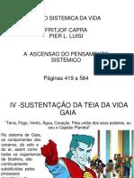 Visaosistemica05 p 421-564