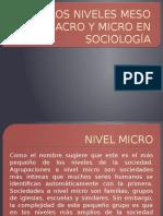 Los Niveles Meso Macro y Micro en Sociología