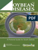 4Soybean Disease