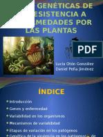 Bases Genéticas de La Resistencia a Enfermedades Por 2007