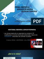 Sistema Renina Angiotensina Aldosterona y Su Bloqueo Farmacologico