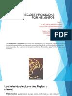 ENFERMEDADES PRODUCIDAS POR HELMINTOS_Equipo5_ppf.pdf