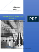 Informe N_1 Quimica de Alimentos