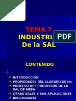 TEMA PI7