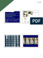 Clases_6_y_7_-_sueno_REM_y_NREM_Ex.pdf